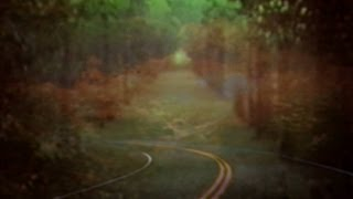 vuclip Bibio - Dye The Water Green (Official Music Video)