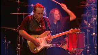Скачать Walter Trout Cry If You Want To