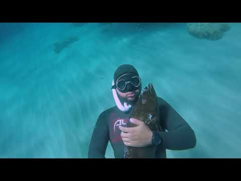 Spearfishing in Tunisia - Badeches