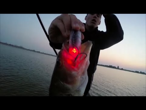 Bass Fishing With Light-Up Lures?!?!?!?!?