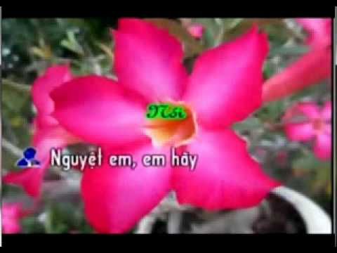 Karaoke To Anh Nguyet (feat voi GMV)_xvid.mp4