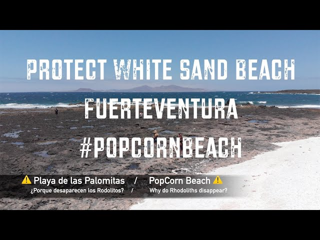 Protect white sand beach Fuerteventura #PopCornBeach