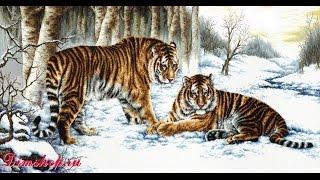 """Вышивка крестом: Мой процесс """"Бенгальские тигры"""" (Bengal Tigers) от """"Dome"""""""