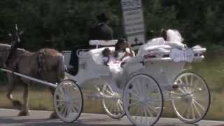 Michael & Cieara Jones Royal Horse & Carriage Song: I Feel Good All Over by Stephanie Mills