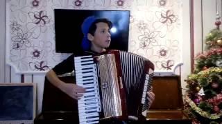Лезгинка на аккордеоне ( новая рубрика)
