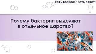 Почему бактерии выделяют в отдельное царство? [30]