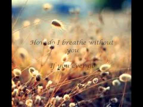 How do I  without you LeAnn Rimes with lyrics