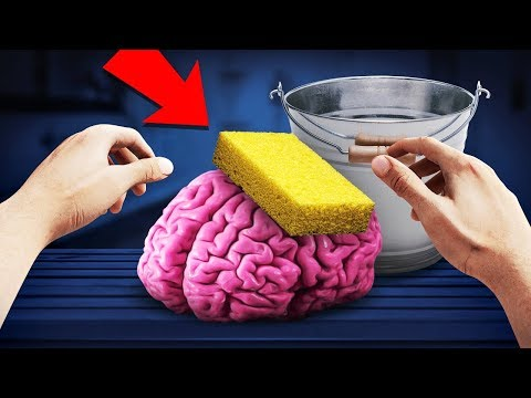 YOU CAN WASH A BRAIN?