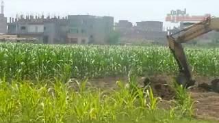 قرية سمادون آشمون منوفية
