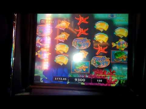 Turtle Bay Slot Bonus * BIG WIN!!!!