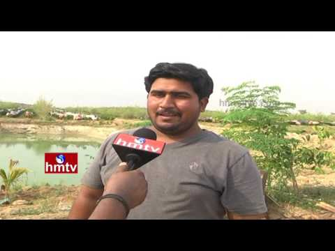 Ideal Framers Earn High Profits From Pomegranate Crop | High Demand on Telangana Rice | Nela Talli