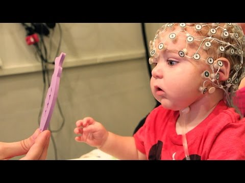 Brain-Training Toys for the Baby Crowd?