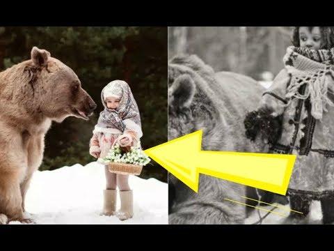 Настоящее чудо в лесу: медведь спас от холода маленькую девочку. Родители не могут поверить!