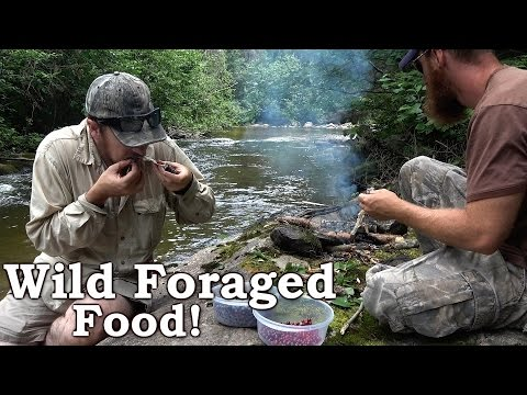 Catch n Cook | Native Brook Trout | Wild Foraged Lunch