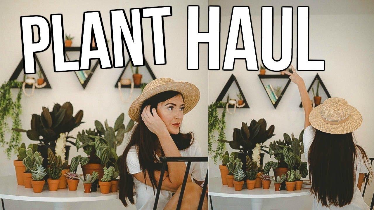 huge-plant-haul-sarah-belle