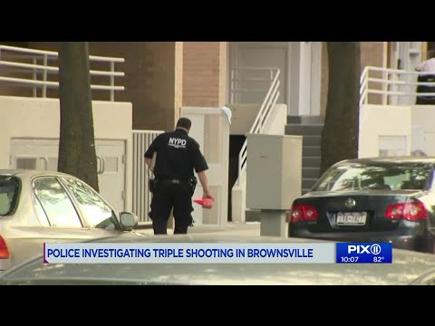 Police Investigating Triple Shooting In Brownsville