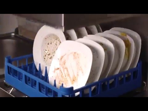 Купольная посудомоечная машина. Принцип работы и правила эксплуатации на torgoborud.com.ua