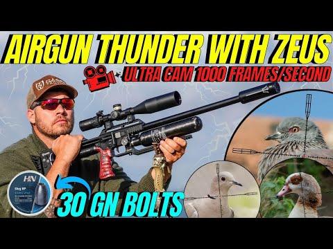 AIR GUN HUNTING WITH MIGHTY ZEUS I FX IMPACT M3 AIR GUN HUNTING PEST CONTROL