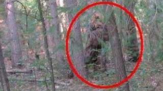 Bigfoot Portals In Southern Oregon Caught On..... Audio?