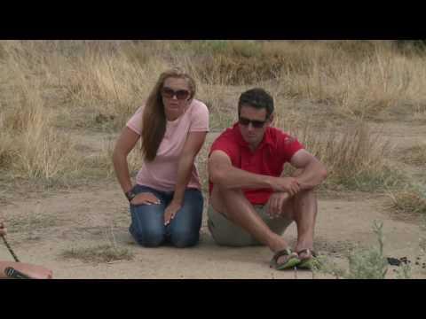 Wild Jobs Namibia S01 E03: Snakes