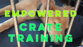 Have You Fallen For This Crate Training Myth?