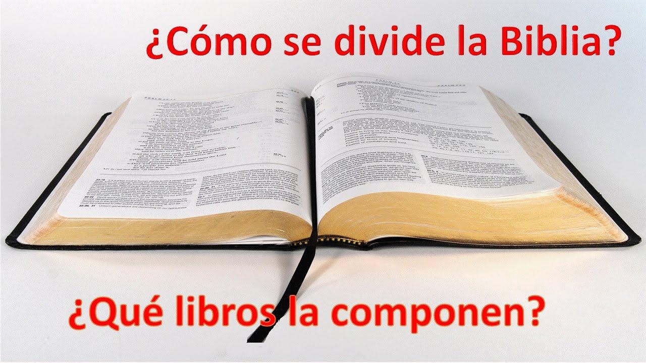 Cómo se divide la Biblia y qué libros la componen - YouTube