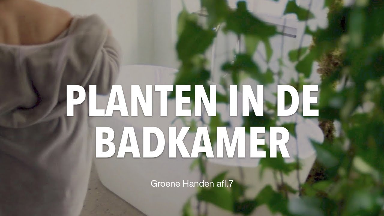 Planten in de badkamer! - YouTube