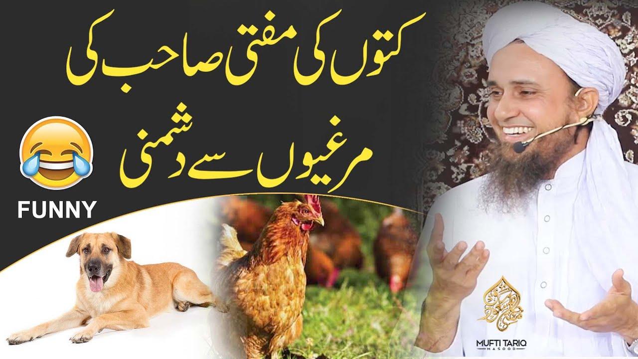 Kutton Ki Mufti Sahib Ki Murgiyon Se Dushmani  | Ask Mufti Tariq Masood