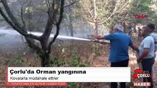 Orman yangınına kovalarla müdahale ettiler