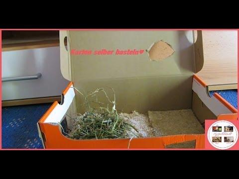 Top Karton für Nager basteln❤ MyGerbilsWorld - YouTube SG89