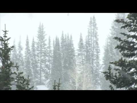 10 Hours of Winter Snow Storm Sounds | High-Quality Winter Snow and Wind Sounds
