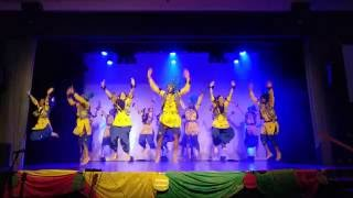 Dunedin Bhangra Company (DBC) 2016