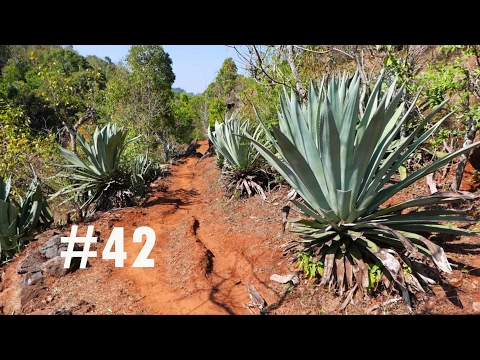 VLOG #42 Amazing trek to Rani Mahal