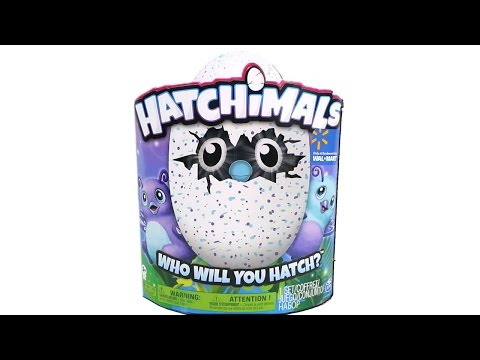 Hatchimals Burtle Egg Hatching Unboxing Toy Review Walmart Exclusive