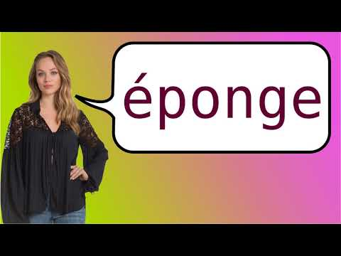 How to say 'sponges' in French?