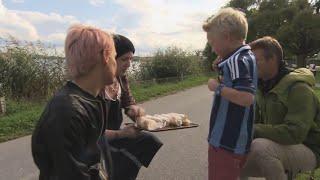 Svenskar hatar ungdomar och baguetter, Under Samma Tak