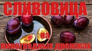 Турбо Сливовица на диких виноградных дрожжах. Часть 1.