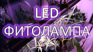 LED фитолампа своими руками