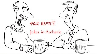 Funny joke in amharic