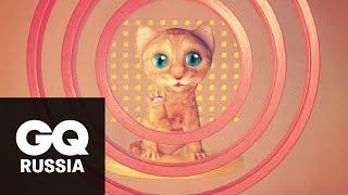 Что внутри корма для котят?