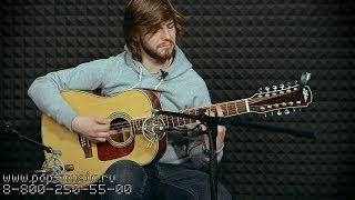 12 ти струнная гитара ARIA AD 20T