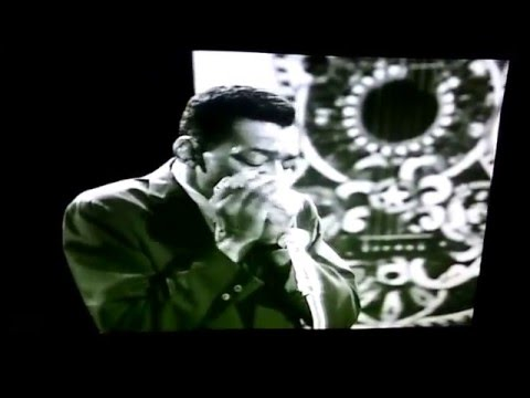 Little Walter Mean Old World (Live) AFBF