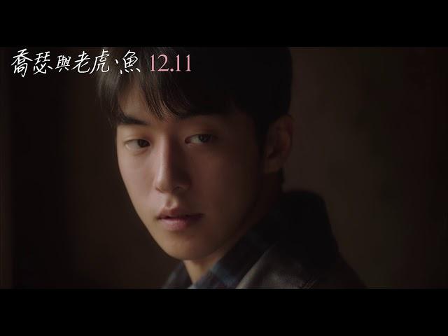 【喬瑟與老虎、魚】前導預告 12/11 全台上映
