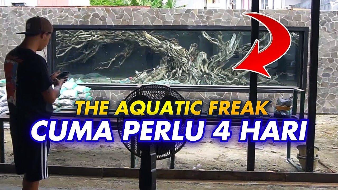 #44- RAHASIA SETTING HARDSCAPE MEGATANK 100TON Feat @The Aquatic Freak