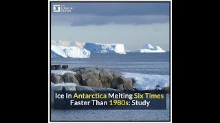 Ice In Antarctica Melting Six Times Faster Than 1980s: Study