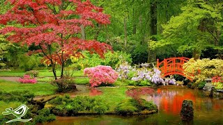 Japanese Garden | Relaxing Music by Peder B. Hella...