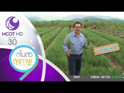 ย้อนหลัง สโมสรสุขภาพ (16 ธ.ค.59) คนไทยสุขภาพดี เกษตรกรแข็งแรง - ต้นหอม ป้องกันอัลไซเมอร์ | 9 MCOT HD