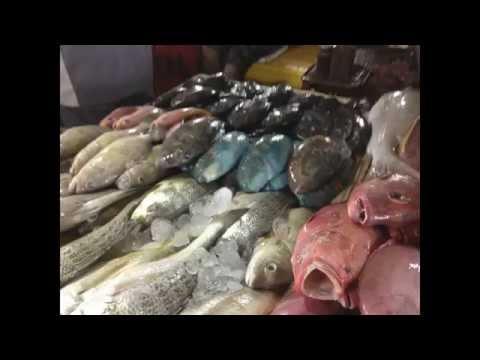 Indonesia - Bali - Fish Market