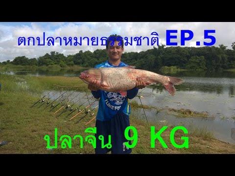 Trip ตกปลาหมายธรรมชาติ EP.5 ความสุขสุดของการตกปลาคือได้ Trophy ไซค์งาม