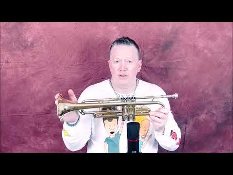 The Cheapest New Reliable B flat Trumpet MENDINI